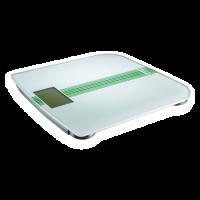 Επιδαπέδιοι ζυγοί βάρους